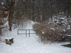 heerlijk wandelen in de sneeuw