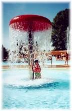 Zwemfontijn